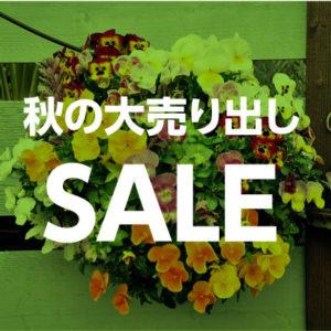 11/23〜秋の大売り出し